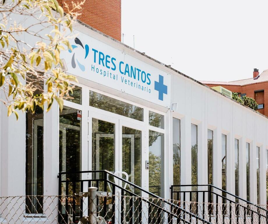 Hospital Veterinario Tres Cantos