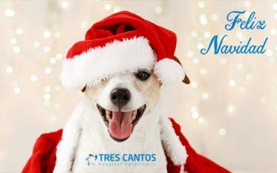 ¡Feliz Navidad y Próspero Año Nuevo!